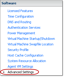 VMware ESXi5 Host - Software - Advanced Settings